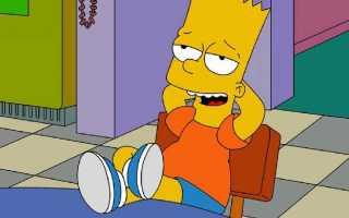 Характеристика Барта Симпсона