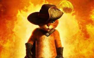 Кот в сапогах — все самое интересное о персонаже