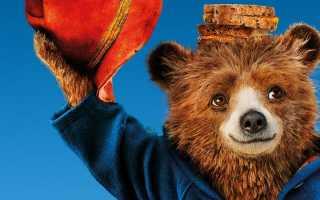 Медвежонок Паддингтон: факты, биография и описание